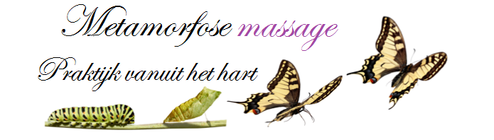 Metamorfose massage